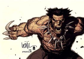 Wolverine by leinil by MAROK-ART