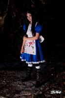 Alice Liddell from Alice Madness Returns by H4ruH1m3