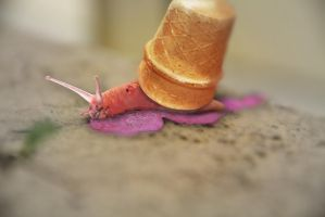 SnailBerry Icecream by Square-Ball