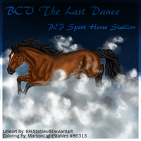 BCV The Last Dance by WhimsicalRuby