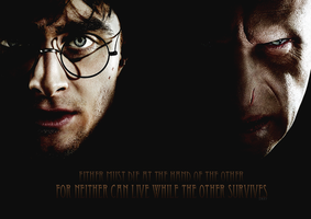 Harry Potter VS Lord Voldemort by Toxic-Sway