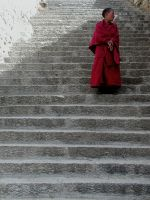 tibet -- young monk on stairs by emma510