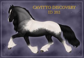 Cavitto Discovery ID 202 by Cariannarz
