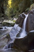 Williams River Waterfall 2 by robertvine