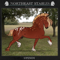 ES Upendi 4905 by NorthEast-Stables