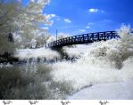 Infrared Stock - 2013 - 39 by ElaineSeleneStock