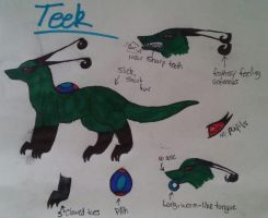 Teek by BlueTheSheWolf