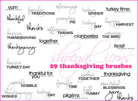100x100 Thanksgiving Brushes by kissncontrol