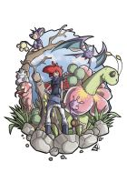 Pokemon Team Com.