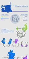 Smoke Kitty Guide by x-BlueberryHeart-x