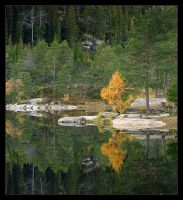 A Reflection of Autumn by Fishermang