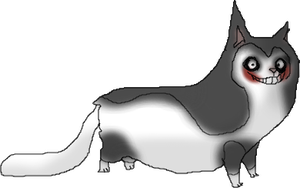 Jeff The Munchkin cat by Moracalle