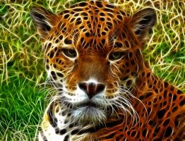 Jaguar: Fractalius Re-Edit by nerdboy69