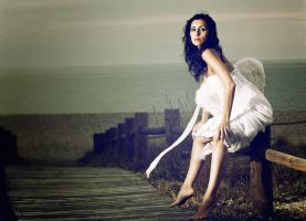 Lost Angel by Perena