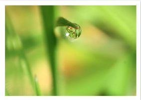 one drop by GemmaGreen