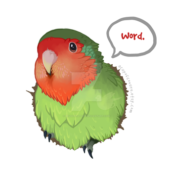 Bird (is the) Word | Tees, Decals, Prints by Brushfeather