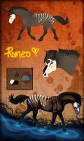 665 Romeo by Cloudrunner64