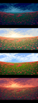 Poppy field: palettes by sulamith