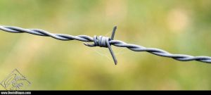 Wire of Hurt by DenisDlugas