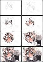 Tiger - Step by step by be-a-sin