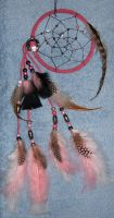Wicked Pink -DreamCatcher by cardnial-wolf