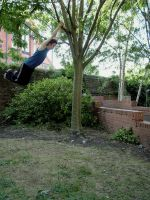 Zade - Tree Swinging IV by Zade-uk