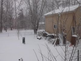 Snowy Yard - 3 by blackhavikgraphics