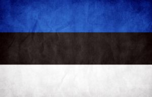 Estonia Grunge Flag by think0