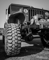 Willys by Sjodin