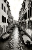 Venice River by MattEdson