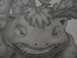Venusaur drawing - Face by sazmullium