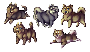 Fat Azn Dogs revamped by bawky