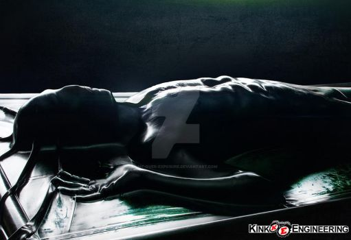 Carbonite Vacbed by Kink Engineering by my-over-exposure