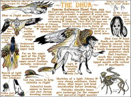 Dhur species ref vers 1 by ghost-eye