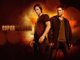 Sam and Dean by angie-sg