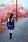 Fruits Basket: One step at a time by Kaira27