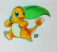 #004 - Charmander by GTS257-CT