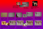 Fur tutorial 2012 by MagicallyCapricious