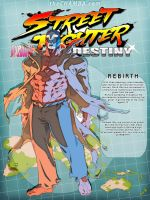 STREET FIGHTER DESTINY: REBIRTH by theCHAMBA