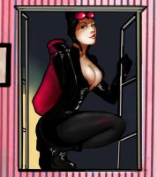 Catwoman: the bag1 by YETI000