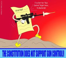 The Constitution Does Not Support Gun Control by IAmTheUnison