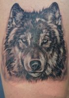 wolf tattoo by twyliteskyz