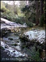 Cragside House: Stream In Snow by McFit