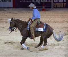 STOCK - Equitana 2013-186 by fillyrox