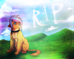 To all the victims from the MH17 by Maonii