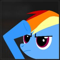 Black Ops 2 Rainbow Dash Salute Emblem by WizE-KevN