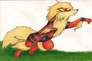 Arcanine by Pokemon-Chick-1