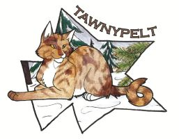 10. Tawnypelt by CaptainMorwen
