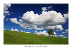 Green fields of summer - XIV by DimensionSeven