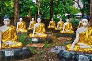 Garden of the Buddhas by CitizenFresh